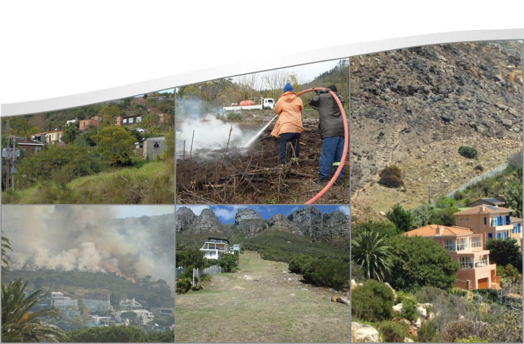 firescaping in fynbos