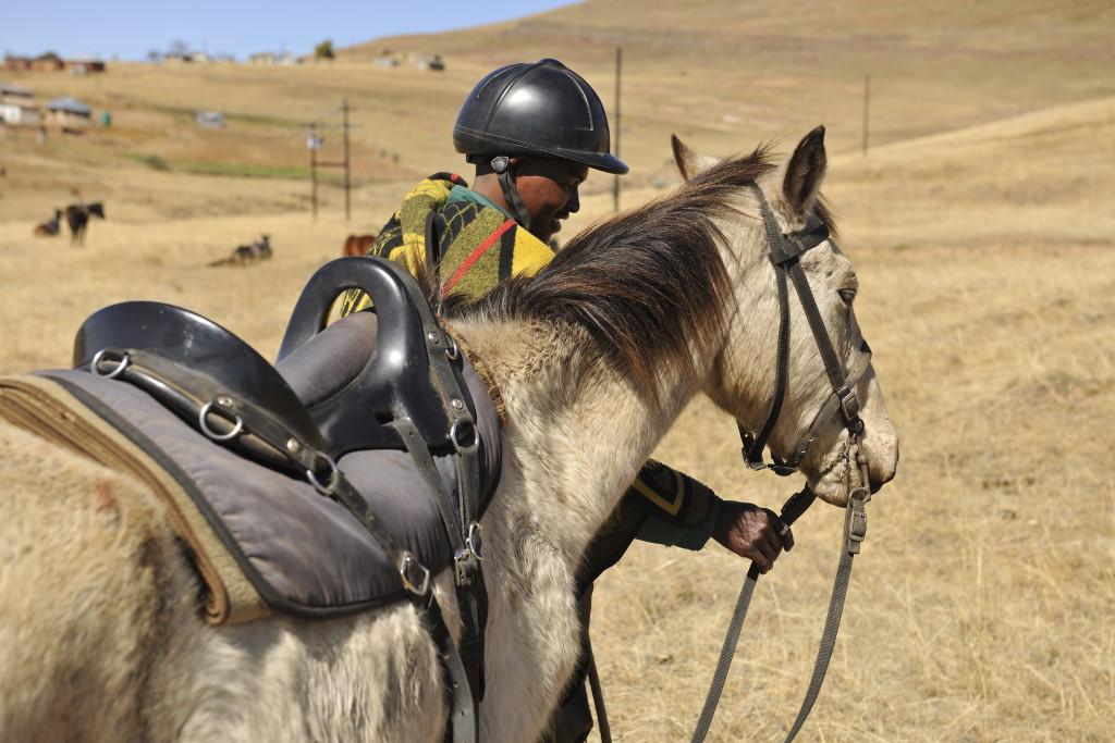 Nkau Inkumani Horse team